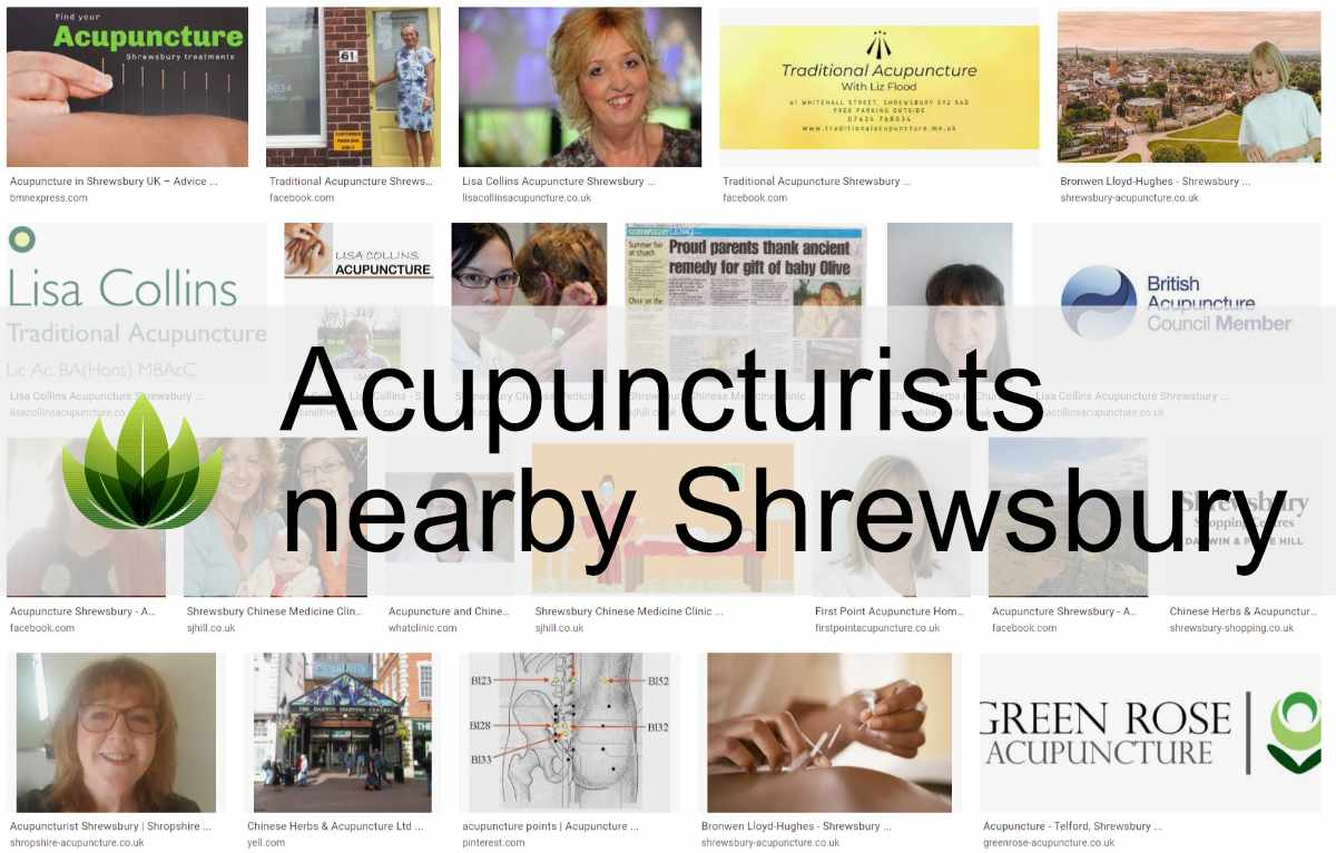 Read more about the article Shrewsbury and Traditional Chinese Medicines